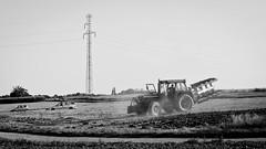 Wczorajsze żniwa III (Kamcia666) Tags: bw traktor natura pola marklowice sierpień żniwa plony
