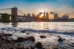 NYC Shoreline (Brandon Schuster) Tags: nyc sunset sun newyork river us colorful cityscape unitedstates metro worldtradecenter bridges landmark citylights brooklynbridge suspensionbridge freedomtower