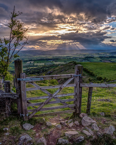 View through the gate, Mid Wales