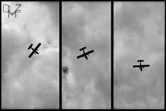 planes 3 (diemmezeta) Tags: sky bw cloud clouds monocromo fly nuvole nuvola bn volo cielo aereo biancoenero bordodiunafoto