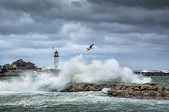 Hurricane Joaquin (betty wiley) Tags: lighthouse storm jetty massachusetts newengland southshore scituate bettywileyphotography hurricanejoaquin