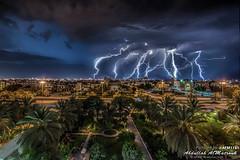 AFM1181_00.jpg (AFM1181) Tags: lighting sky house tree car rain night palms lights palm kuwait thunder q8 grean afm1181