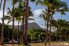 IMG_7224 (AlexDurok) Tags: ocean volcano islands waikiki snorkeling trail poke kauai waimea hanaleipier honolulu bigisland hilo maunakea hawai princeville keebeach ohau kailuakona napalicoast alamoanabeachpark lawai blacksandbeach diamondheadcrater dolphindiscovery kalalautrail waimeacanyonstatepark wailuariverstatepark beachhouserestaurant keauhoubay portallenairport poipubeachpark southpointpark waipiovalleylookout spoutinghornpark captainjamescookmonument papakoleagreensandbeach hawaiʻivolcanoesnationalpark kealakekuabaystatehistoricalpark kaimubeachpark pu'uokilalookout awaawapunitrail hanaleibaybeachpark