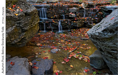 Autumn Pool Below Rockway Falls (jwvraets) Tags: autumn pool leaves waterfall nikon gimp stcatharines opensource niagaraescarpment rockway nikkor1224mm rockwayfalls d7100 rawtherapee fifteenmilecreek