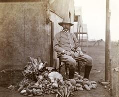 Superintendent of Potchefstroom, c.1901.