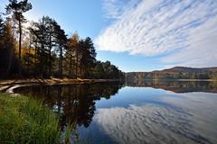 Reflets sur l'tang de Hanau (Excalibur67) Tags: autumn trees automne landscape nikon sigma arbres paysage reflexion reflets eaux tangs greatphotographers d7100 vosgesdunord ex1020f456dchsm
