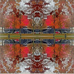2015-11-26 symmetry 12 (april-mo) Tags: autumn red art leaves experimental symmetry symmetric experimentaltechnique