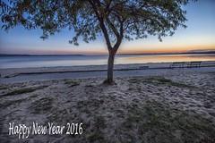 Happy New Year 2016 (dorameulman) Tags: beach sunrise dawn michigan newyear lakemichigan newyearseve traversecity scenicmichigan puremichigan dorameulman newyear2016