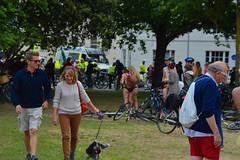 Walking the dog (Le monde d'aujourd'hui) Tags: park street dog walking brighton walk dogwalking gog 2015 wnbr