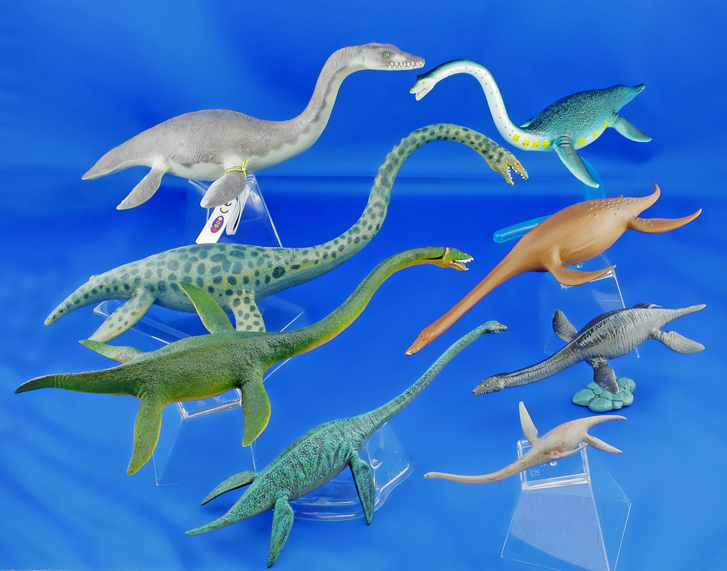 The World's newest photos of elasmosaurus - Flickr Hive Mind - photo#7