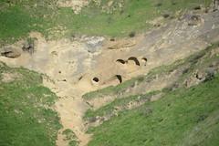 wind eroded caves BDM 2-20-15 (THE Holy Hand Grenade!) Tags: geotagged caves blackdiamond blackdiamondminesregionalpreserve antiochca ebparksok nikond610 sigma150500mm563os