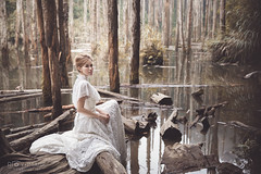 / foggy forest ( Roy Image) Tags:         fantasy glamour beautiful classical fog forest weddingdress  mist girl imagination withered trees water   charming foggy warmtone warm
