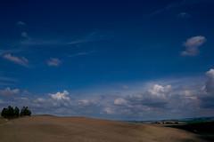 (trevis_lu) Tags: photo lanbdscape paesaggio toscana tuscany cretesenesi colline hills nikondf nikkor35mmf18
