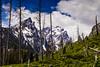 The Tetons (mghornak) Tags: grandtetonnationalpark grandtetons mountains tree canon canoneos5dmarkii landscape clouds snow