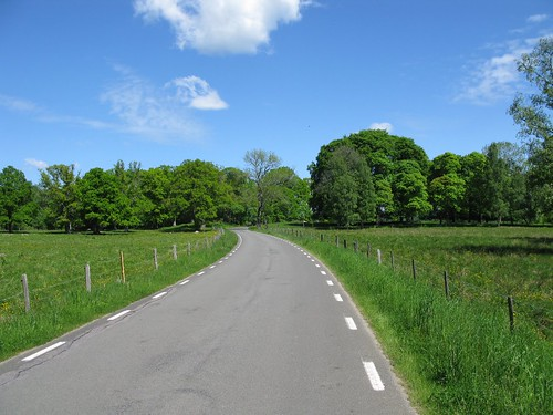 The road between Stenum and Axvall 2010(3)