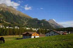 DSC02099 - St. Moritz