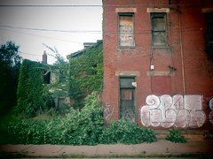 Nature is the Ultimate Censor. (david grim) Tags: manchester northside pittsburgh pa pennsylvania