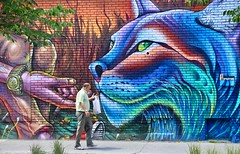 Feeding Wild Animals (Alex L'aventurier,) Tags: montreal montral quebec qubec canada rue street art graffiti murale couleurs colors colours bricks briques mur wall candid homme man walking marcher mouvement movement cat chat flin arbres trees vgtation bush grass urbain urban