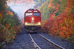 autumn, aweres township (twurdemann) Tags: agawacanyontourtrain algomacentralrailway autumn awerestownship canadiannationalrailway cn104 emdf40phr fall2016 fallcolor fallcolour fog forest fujixt1 heyden highway552 landscape locomotive mile1625 morning nikcolorefex northernontario ontario passengertrain railroad railway scenic tonalcontrast traintracks trees weather xf55200mm