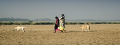 (Kals Pics) Tags: kollidam banks women morning sunrise lightandlife sky nature tiruchirapalli thanjavur dogs pets animals guard thirumazhapadi ariyalur thirumanur kaveri indianvillages ruralpeople villagelife ruralindia villagepeople rurallife india tamilnadu lightandshadow trichy tanjore tirumanur vegetation grasslands kalspics kauvery cauvery