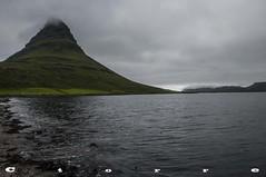 5093 A Kirkjufell (carlostorrebenito) Tags: agua algas color fiordo h niebla nubes mar verde water seaweed colour fjord fog clouds sea green islandia 352