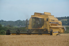 New Holland TX68 Combine Harvester cutting Winter Barley (Shane Casey CK25) Tags: new holland tx68 combine harvester cutting winter barley yellow cnh nh castlelyons newholland grain harvest grain2016 grain16 harvest2016 harvest16 corn2016 corn crop tillage crops cereal cereals golden straw dust chaff county cork ireland irish farm farmer farming agri agriculture contractor field ground soil earth work working horse power horsepower hp pull pulling cut knife blade blades machine machinery collect collecting mähdrescher cosechadora moissonneusebatteuse kombajny zbożowe kombajn maaidorser mietitrebbia nikon d7100