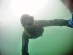 GOPR5971 (ambrogi_taubate) Tags: naturezaselvagem marinha mergulhando ubatuba sp brasil naturezamarinha fantstica apneia 10m setembro primavera 2016