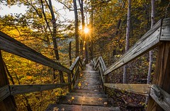 Stepping into Fall. (Bernie Kasper) Tags: art berniekasper bridge cliftyfallsstatepark cliftyfalls color d600 family fall hiking indiana jeffersoncounty landscape light leaf leaves madisonindiana madisonindianacliftyfallsstatepark tree trees travel sun sunset stairs staircase sky old outdoors outdoor nature nikon naturephotography new woods wood lights