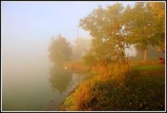 Matin d'automne (Les photos de LN) Tags: matin automne lac brume brouillard couleurs teintes coloris feuillage lumire calme beaut srnit