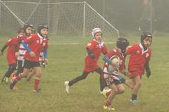 DSCF7277 (Minirugby AS Rugby Milano) Tags: 31102016 u7 cusago