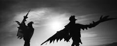 Felix Tian Burning Man 2016 Utopia22 (felixtian.com) Tags: burning man 2016 contaxrx zeiss21mm xpan infraredfilmhie kodaktmx100 ilforddelta400