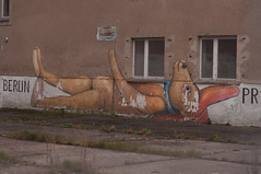 Prora01-14 (DidaK) Tags: germany bear building graffiti prora rugen streetart
