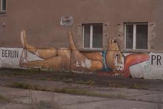 Prora01-14 (DidaK) Tags: germany bear building graffiti prora rugen streetart