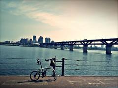 ORi_Bike_AR20001 (dorajistyle) Tags: ori bike ar20 minivelo folding