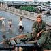 The battle for Saigon 1968 - Photo by Philip Jones Griffiths - Trên cầu Chữ Y