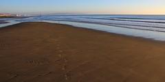 Coast at Shanklin - Isle of Wight 021116 (4) (Richard Collier - Wildlife and Travel Photography) Tags: seascape isleofwight shanklin coastal southcoast water sea coastallandscape