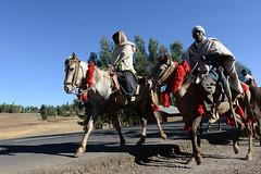 HORSES (BoazImages) Tags: horse horses ethiopia ethiopian amhara people riding hornofafrica africa boazimages documentary