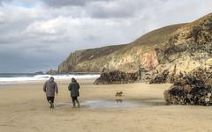 The beach at Chapel Porth, Cornwall (Baz Richardson (catching up again!)) Tags: cornwall northcornwall chapelporth sandybeaches cliffs coast rockpools