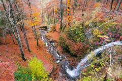 Fahler Wasserfall (beatriceverez) Tags: todtnau schwarzwald feldberg black forest germany autumn herbst