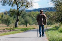 autumn walk (Daniel Czichowsky) Tags: herbst autumn walk nordic walking ef 70200l is 4 usm canon eos czichowsky