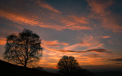 Sunset on Midsummer Hill (cliveg004) Tags: midsummerhill malvernhills malvern worcestershire herefordshire sunset clouds sky trees silhouette winter evening nikon d5200