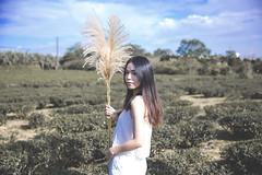 IMG_1137 (Yi-Hong Wu) Tags:               eos6d