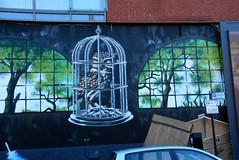 More Street Art (jaffa600) Tags: streetart graffiti graffitti urbanart urbangraffiti mural art artpistol rogueone rogue streetpainting glasgow glasgowcity glasgowart scotland