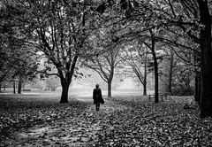 Misty Mornings (Petricor Photography) Tags: milan milano street photography fall autumn mist misty people black white blackandwhite candid