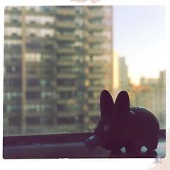 Personal Happiness (nefasth) Tags: toronto toy vinyl kidrobot kozik labbit jout personalhappiness hipstamatic