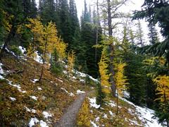 Gibbon Pass Hike - The trail approaching Gibbon Pass (benlarhome) Tags: autumn mountain canada fall nature montagne rockies nationalpark herbst alberta rockymountain banff wilderness gebirge gibbonpass