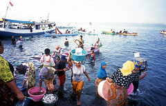 The Arrival : Chaos (mr_loonglaai) Tags: fuji ct natura lombok precisa tanjungluar