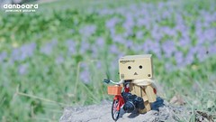 (janetcmt's pictures) Tags: bokeh carlzeiss pancolar danboard