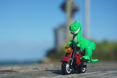 Rex and his Motorbike