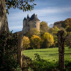 IMG_9558 (muztiko) Tags: france automne ballon arbre sarthe 2015 donjon sigma70200f28 paysdelaloire canon6d